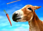 Carrots and sticks – Motivation and the thinking Donkey